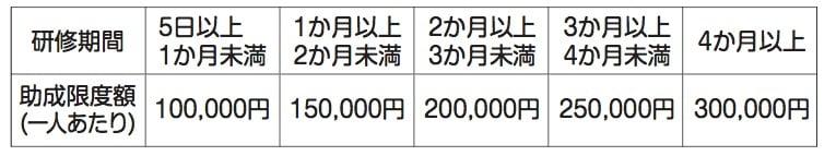 助成額:正規雇用化企業応援事業
